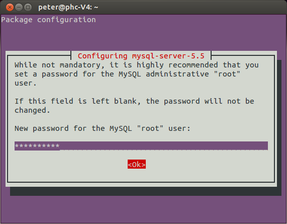 MySQL 5.5 Password setting